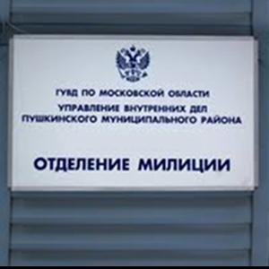 Отделения полиции Благовещенска (Амурской обл.)